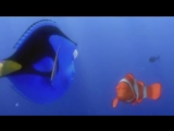 Learn and Practice English with MOVIES #Finding Nemo#