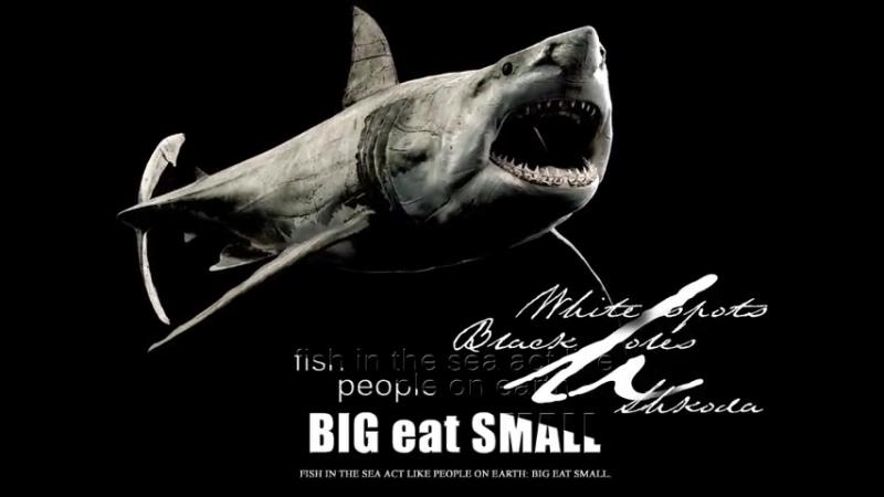 Черные дыры. Белые пятна. Рыбы в море поступают как люди на земле большие поедают малых.