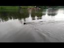 Дождливая прогулка у пруда