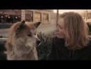Хатико: Самый верный друг (2009)