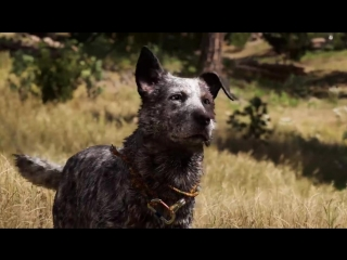 Far cry 5 - gun for hire compilation - ubisoft