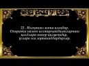 16 Наҳл Nahl surasi