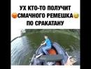 Shkolota_tv