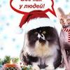 ТРИ ХВОСТА (Стрижка кошек и собак мелких пород)