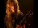 Opeth - The Drapery Falls (live)