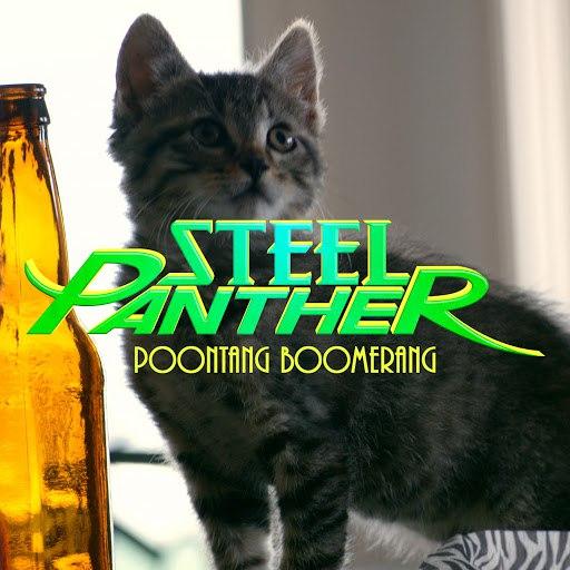 Steel Panther альбом Poontang Boomerang