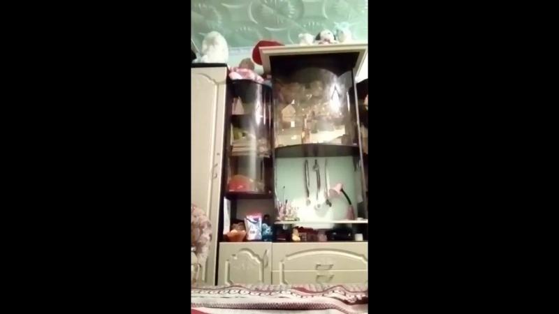 Милена Соколовская - Live