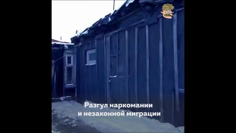 В России кто не работает, тот ест. А кто работает, тот не только не ест но и