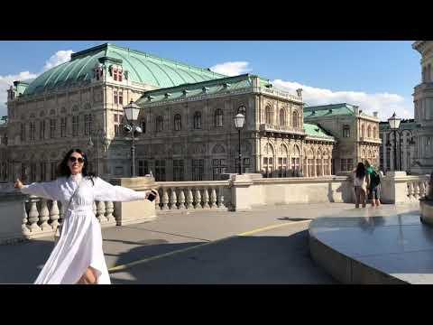 Музей Альбертина, Вена Австрия.