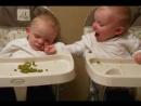 Наши милые детки юмор