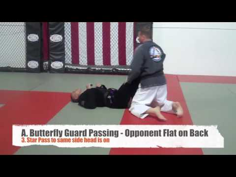 Complete Butterfly Guard Passing System