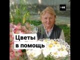 Акция помощи пенсионерам-цветочникам