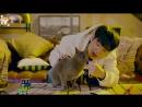 [FSG FOX] San E, Mad Clown - Butterfly Feat. BUMKEY |рус.саб|