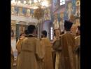 литургия ректор митрополитиларион