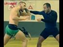 UFC_VINE