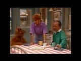 Alf Quote Season 1  Episode  25_О пончике