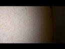 мозаичная мраморная штукатурка