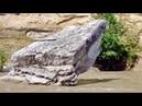Скала в реке Белой - (Joe Dassin - L ete indien)