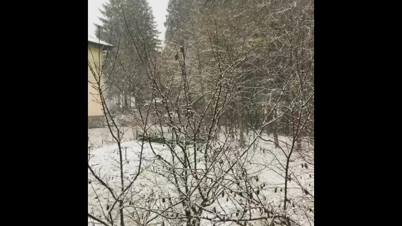 Деревня ГарболовоВид за окном