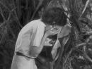 2.Тарзан и его подруга(Приключения.1934)