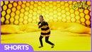 CBeebies Magic Door Learn The Beehive Dance