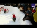 Необычные Санта-Клаусы в китайском тематическом парке