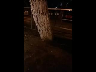 ночью на мопеде