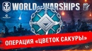 Ночная операция Цветок Сакуры World of Warships