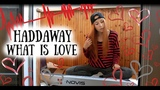 Haddaway - What Is Love multi cover