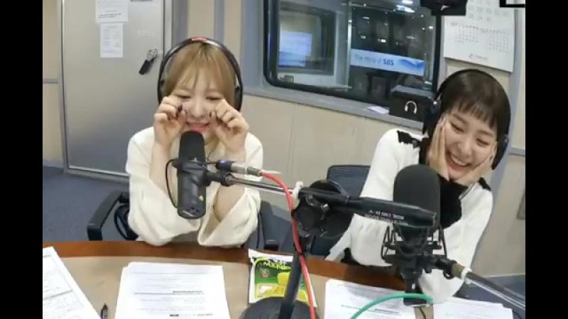 Wendy seulgi = 2 kittens