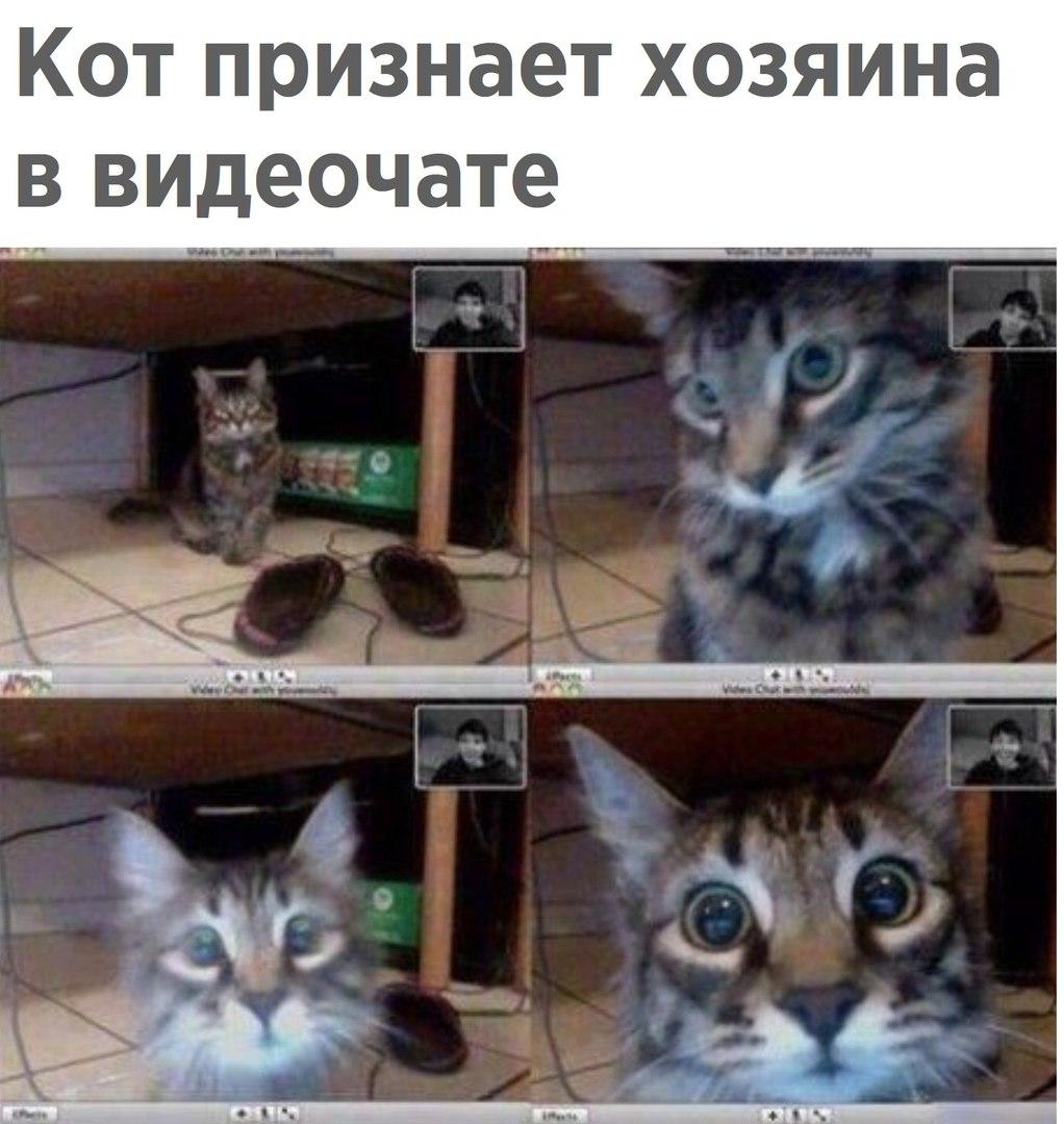 TDlGtjyYKRY.jpg
