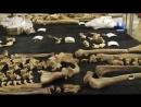 Могилы викингов 04 Тайна захоронения на Риджуэй Хилл 2018