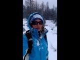 Прогулка по ноябрьскому лесу