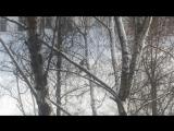 Таисия на лыжах
