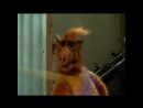 Alf Quote Season 2 Episode 16 Альф
