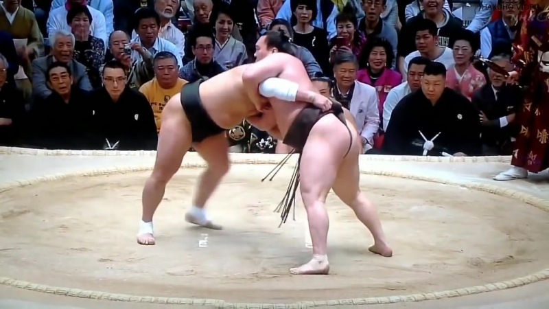 HAKUHO VS HARUMAFUJI - ALL MATCH - PART 2
