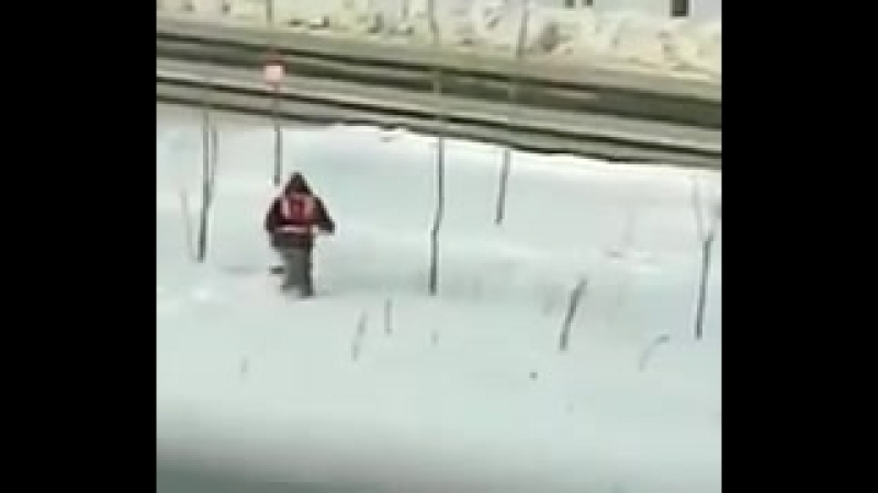 Хабаровск готовится к приезду Путина. Местные холуи стригут траву, торчащую из-под снега.
