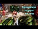 Консервация огурцов на зиму Быстро и просто Все просят рецепт