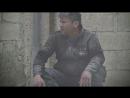 История дома кошек Эрнесто, в Алеппо.