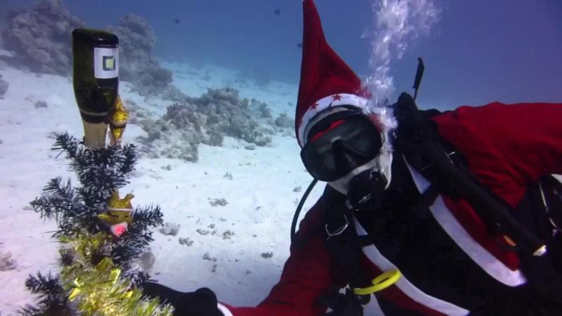 Наш подводный Красноморский Новый год елка, игрушки и детское шампанское -). Огонь !