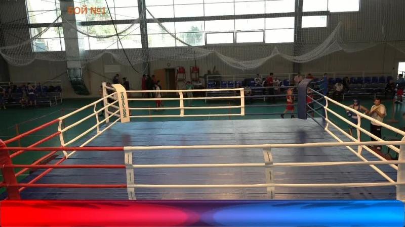 Первенство ЮФО по боксу среди юношей 15 16 лет среди юниоров и юниорок 19 22 года День 2