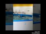 Видео отзыв о Бухты-барахты