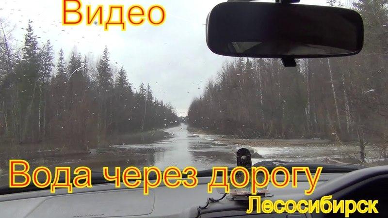 Наводнение вода через дорогу река Дубровка 26 апреля 2018 Лесосибирск дорога на Мирный