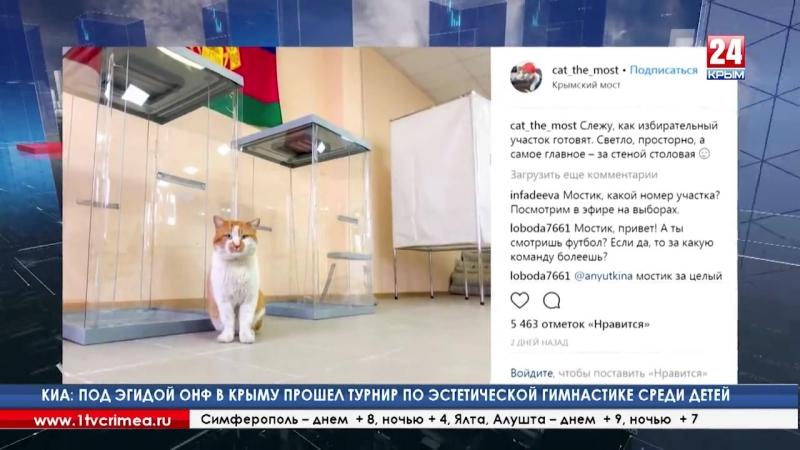 Голосование в особых условиях Как проходят выборы в аэропорту на Крымском мосту и в СИЗО Голосование в любых условиях возможн