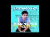 SANTIAGO SKY - MISSING YOU (NEON DISCO VOL 1)
