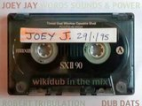 Joey Jay meets Robert Tribulation - reggae roots dub dats 1995 wikidub