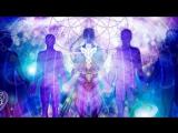 Neue Evolutionstheorie! - Morphogenetische Felder (Was uns bevorsteht und verhindert werden soll)