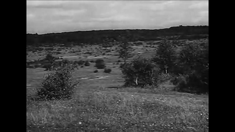 Немецкие снайперы Учебный Фильм Командования Люфтваффе
