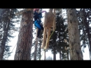 Юный спасатель - этап Альпинист