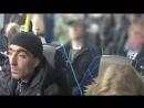 Дрочер мигрант из Стокгольма Борода Викинга